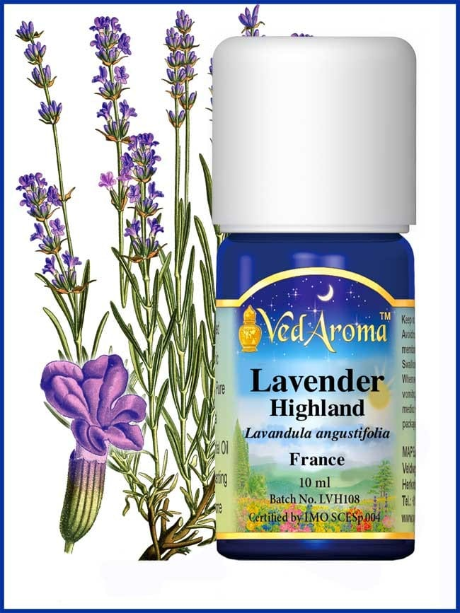 lavender-highland-essential-oil