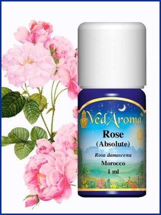 rose-absolute-essential-oil