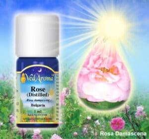 Rose Vedaroma Essential Oils