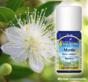 Myrtle Vedaroma Essential Oils
