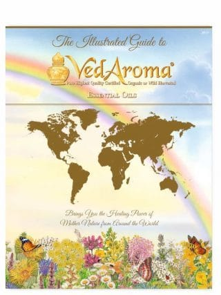 ac-vedaroma-illustrated-guide-2019