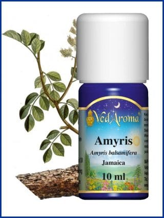 amyris-essential-oil