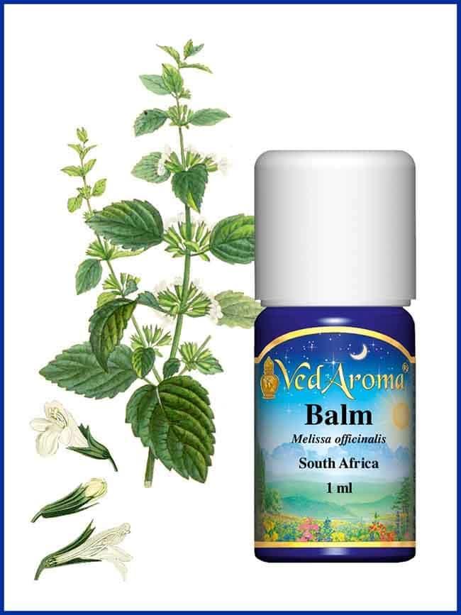 balm-essential-oil