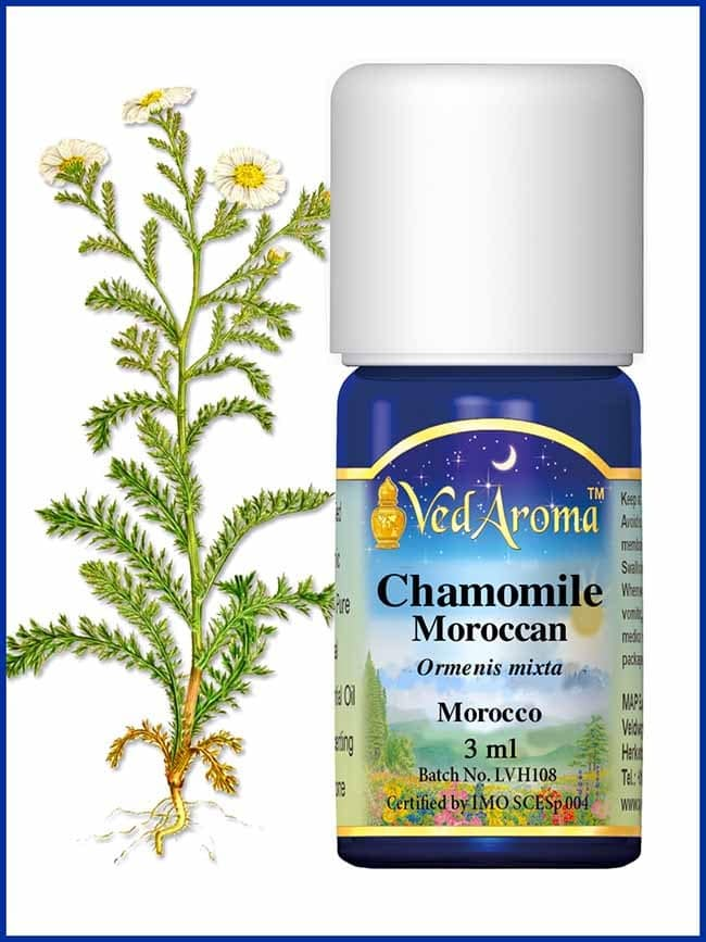 chamomile-moroccan-essential-oil