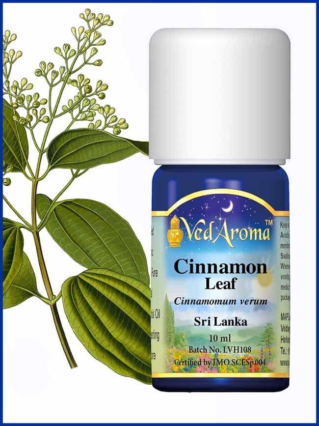 cinnamon-leaf-essential-oil