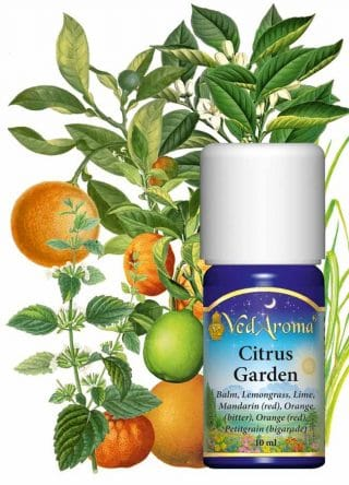citrus-garden-essential-oils-blends