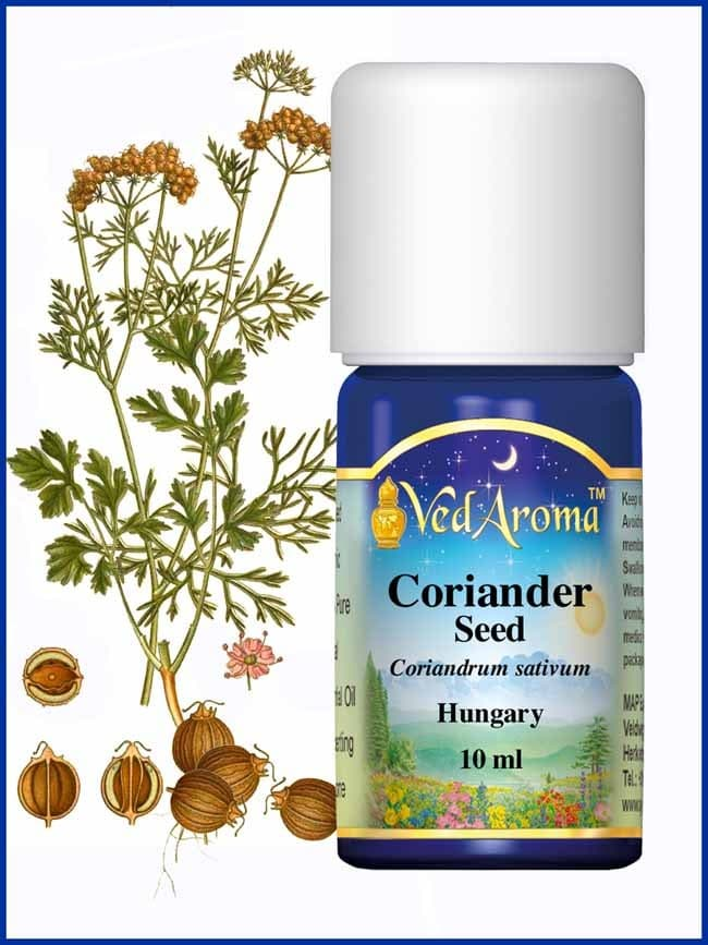 coriander-seed-hungary-essential-oil