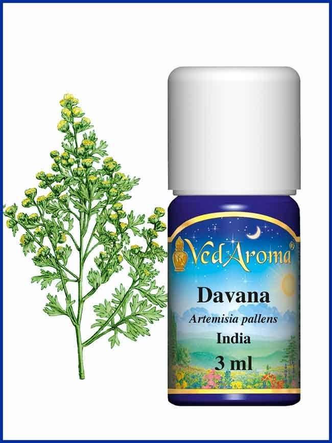 davana-essential-oil