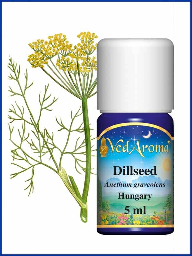 dill-seed-essential-oil