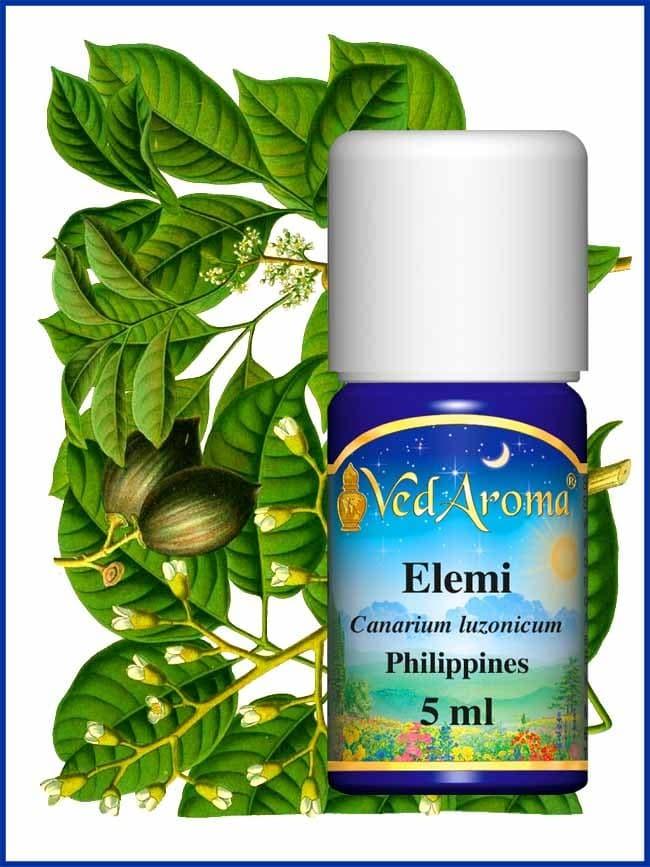 elemi-essential-oil