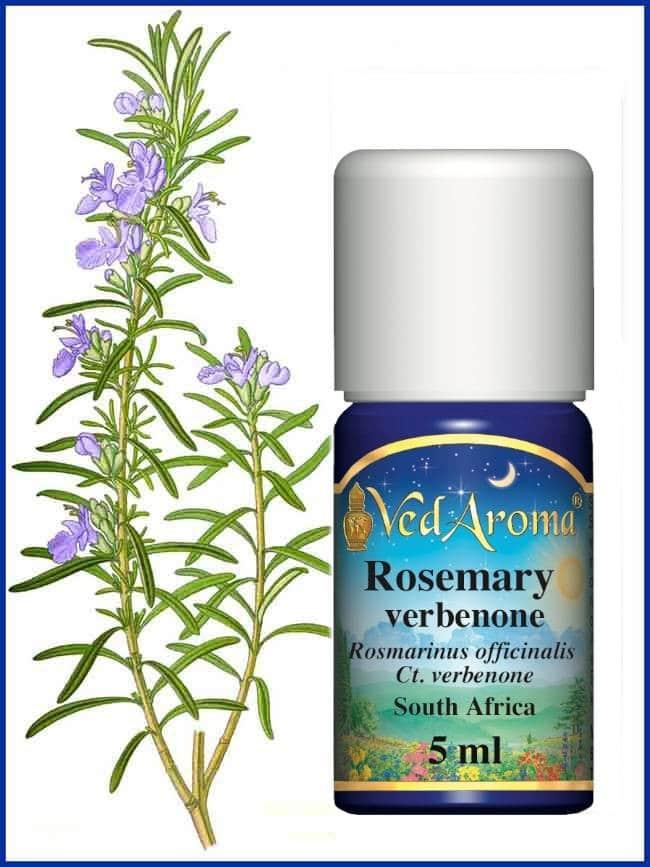 rosemary-verbenone essential-oil
