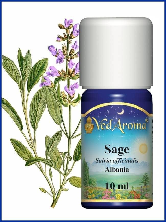 sage-essential-oils
