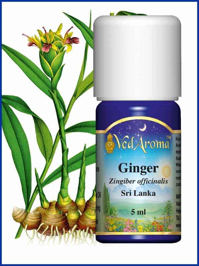 ginger-5ml-essential-oil