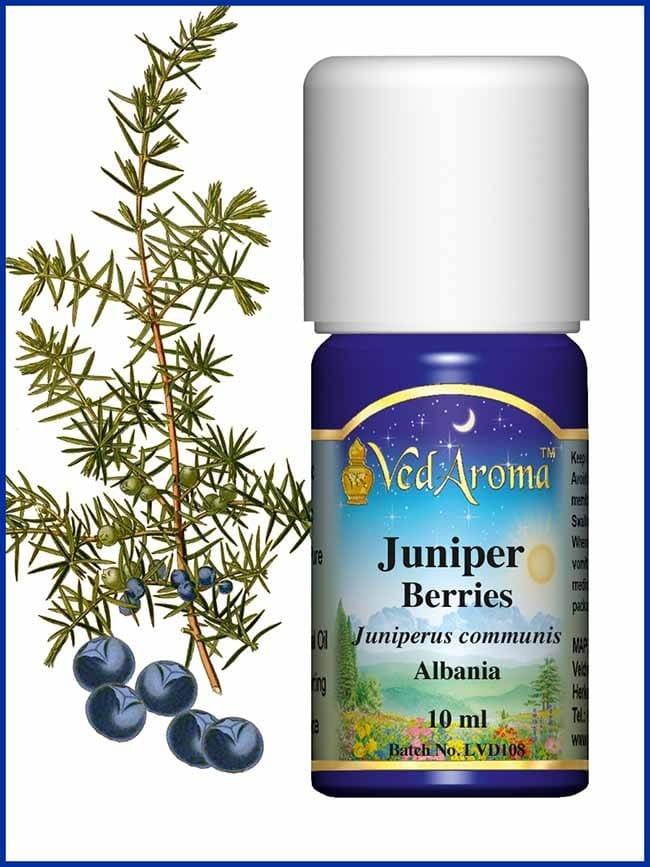 juniper-berry-essential-oil