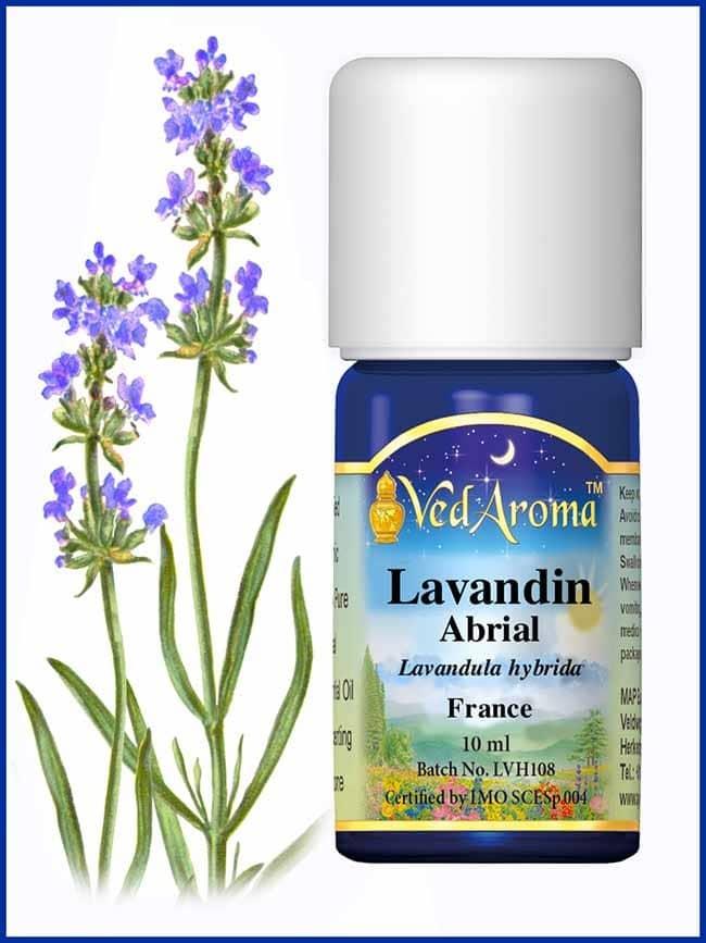 lavandin-abrial-essential-oil
