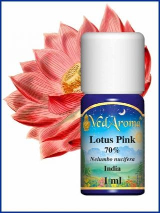 lotus-pink-absolute-70-diluted-in-organic-alcohol