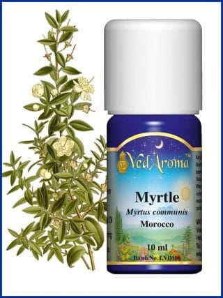 myrtle-essential-oil