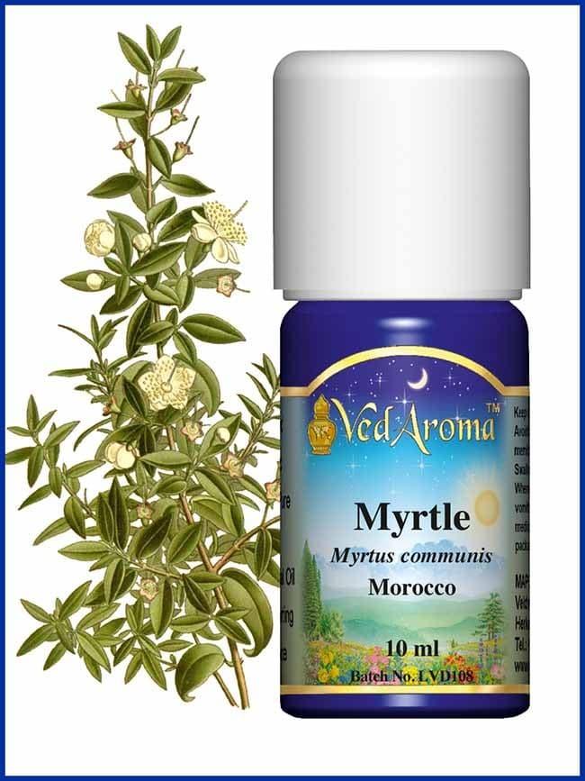 myrtle-essential-oil