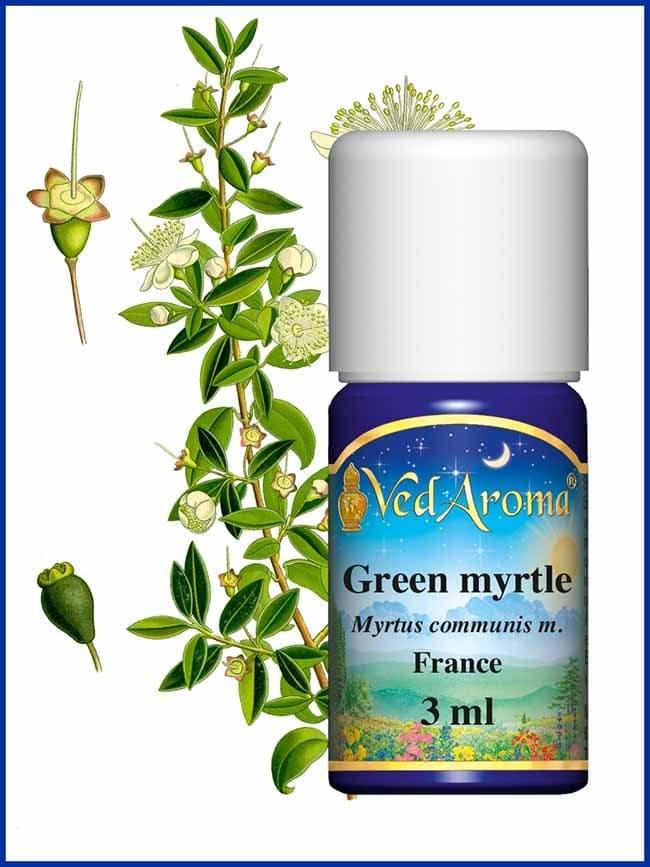 myrtle-green-essential-oil