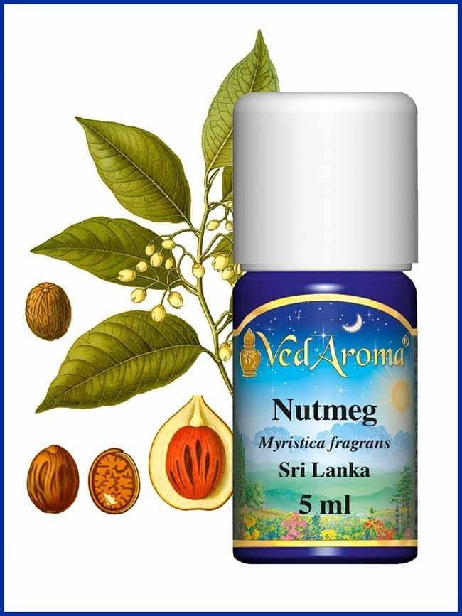 nutmeg-essential-oil