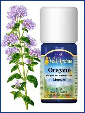 oregano-essential-oil