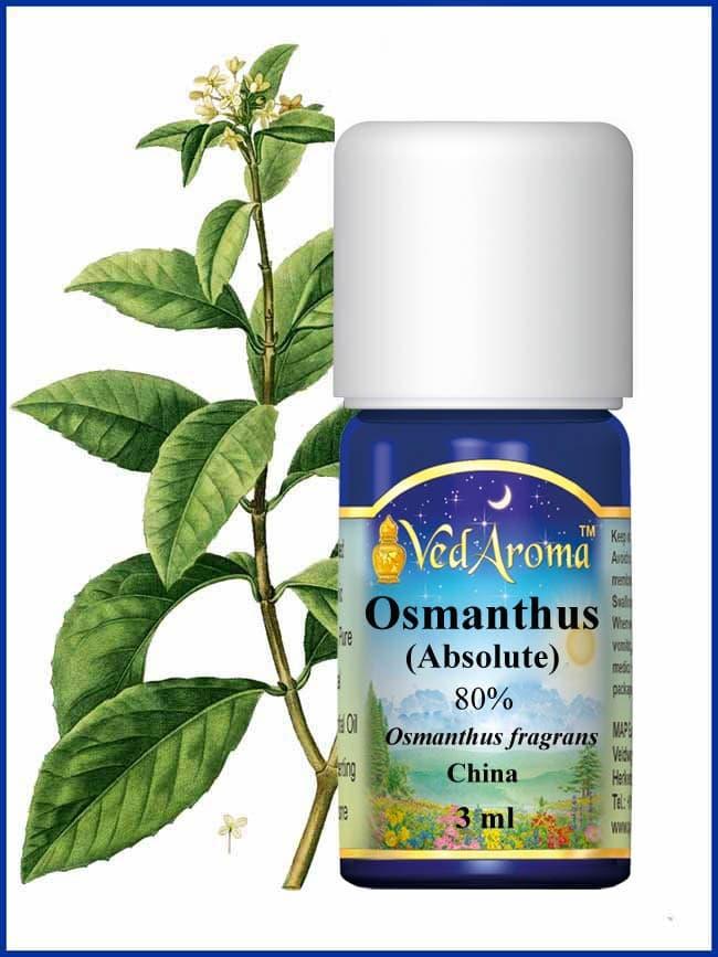 osmanthus-3ml-essential-oil