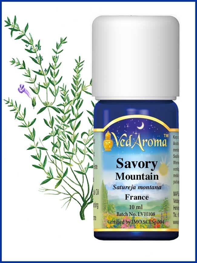 savory-mountain-essential-oil