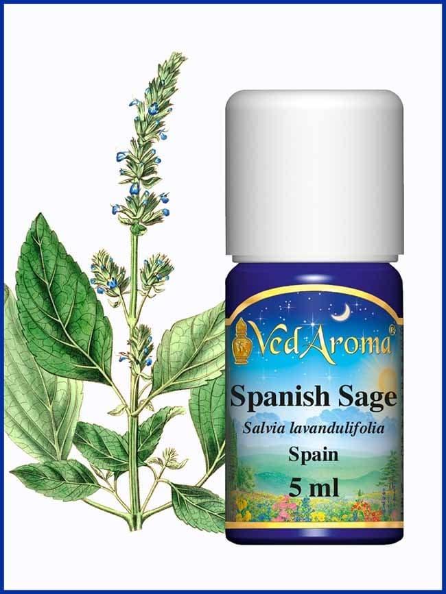 spanish-sage-essential-oil