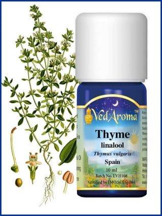 thyme-linalool-essential-oil
