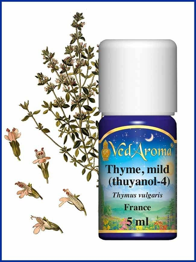 thyme-mild-thujanol-4-essential-oil