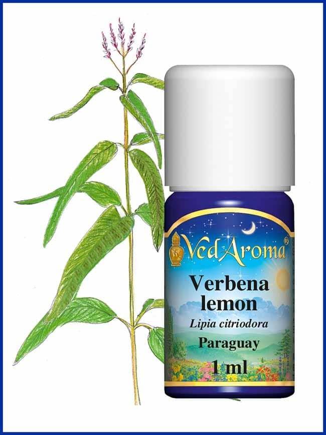 verbena-lemon-essential-oil