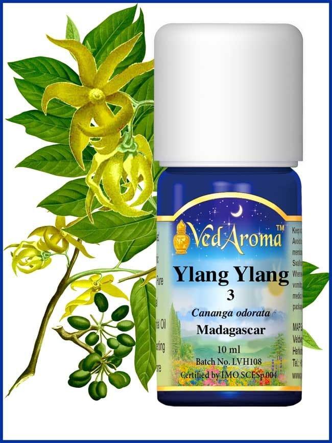 ylang-ylang-3-essential-oil