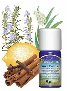 Panch Pandava
